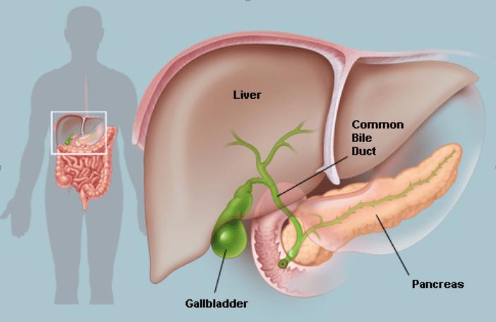 Gallbladder Surgery in Hyderabad